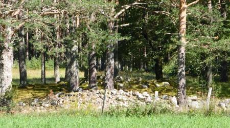Wikinger-Hügelgräber